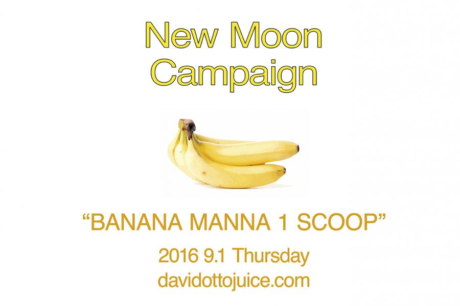 NEW MOON CAMPAIGN
